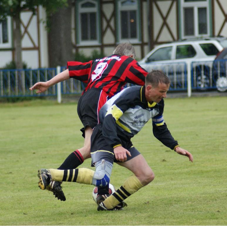 29. Spieltag Saison 2008/2009